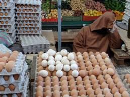 Vendedor de huevos (durmiendo), del Gran Mercado de Agadir, 2014.